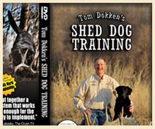 Shed Dog Training DVD